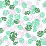 Seamless decorative pattern. Green palm leaves. Tropical monstera leaves illustration. Stock Images