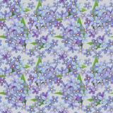 seamless dekorativ blom- modell Royaltyfri Foto