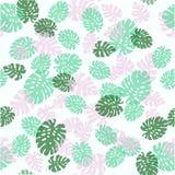 seamless dekorativ modell greenleaves gömma i handflatan Den tropiska monsteraen lämnar illustrationen Arkivbilder