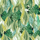 Seamless dense pattern of watercolor leaves. And herbs Stock Image