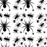 A seamless design with spiders Stock Photography