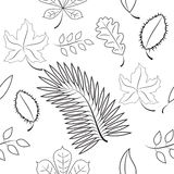 Seamless of different leaves. contour plot Royalty Free Stock Photos
