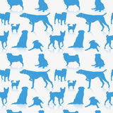 Seamless dog pattern Stock Photography