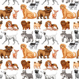 Seamless dogs Royalty Free Stock Images