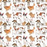 Seamless dogs Stock Photos