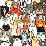 Seamless doodle cats colorful background. A lot of breeds in it royalty free illustration