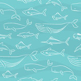 Seamless Doodle Pattern - Big Fishes Stock Photography