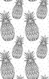 Seamless doodle texture with pineapple with boho pattern. Royalty Free Stock Photos