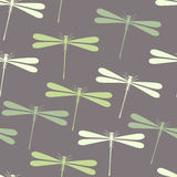 Seamless dragonfly pattern Royalty Free Stock Photography