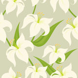 Seamless Easter Lily Stock Photo