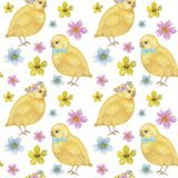 Seamless Easter pattern Watercolor hand drawn of yellow chiken, Spring flowers, willow, bow. Colorful bird, chikens baby