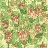 Seamless elegant background with clover flowers Royalty Free Stock Images