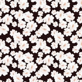 Seamless elegant pattern with flowers roses Royalty Free Stock Photos