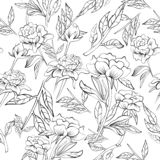 Seamless elegant peony pattern vector illustration