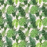 Seamless ethnic tropical pattern. Seamless tropical pattern with bright exotic foliage on ethnic geometry background. Vector illustration Stock Images