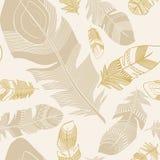 Seamless etnisk indierfjäderplumage mönstrar Arkivbilder