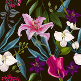 Seamless exotic floral fashion pattern Royalty Free Stock Images