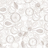 Seamless exotic fruit pattern Stock Photography