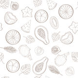 Seamless exotic fruit pattern Royalty Free Stock Photography