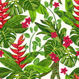 Seamless exotic pattern. Seamless exotic pattern with tropical leaves. Blooming jungle. Vector illustration Stock Images
