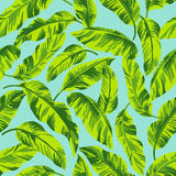 Seamless exotic pattern. Stock Photo