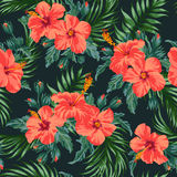 Seamless exotic pattern. Royalty Free Stock Images