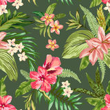 Seamless exotic pattern. Stock Photography