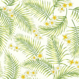 Seamless exotic pattern with tropical leaves. Stock Images