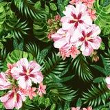 Seamless exotic pattern. royalty free illustration