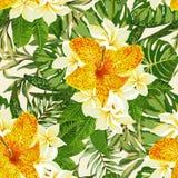 Seamless exotic pattern. vector illustration