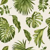 Seamless exotic pattern with tropical leaves. royalty free illustration
