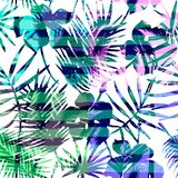 Seamless exotic pattern with tropical palm in bright color. Vector hand drawn texture Stock Photos