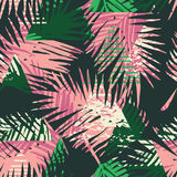 Seamless exotic pattern with tropical palm leaves on geometric background. Royalty Free Stock Image