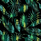 Seamless exotic pattern with tropical plants. Stock Image