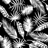 Seamless exotic pattern with tropical plants. Stock Images