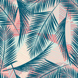 Seamless exotic pattern with tropical plants. Vector hand draw background Royalty Free Stock Photo