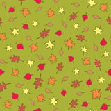 Seamless Fall Leaves. A seamless pattern of assorted types of autumn leaves in various fall colors on an olive green background Royalty Free Stock Photos