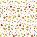 Seamless falling colorful autumn leaves wallpaper pattern Stock Photo