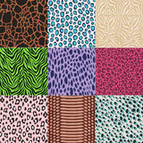 Seamless fashion animal skin textile print Royalty Free Stock Images