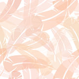 Seamless Feather Pattern Stock Photography