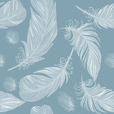 Seamless Feather Pattern. In blue tones Stock Image