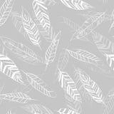 seamless feather pattern stock illustration