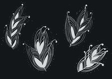 Seamless Feather Pattern from Wonderland on White on Chalkboard. Stock Images