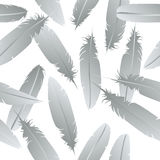 Seamless feathers pattern Stock Photography
