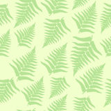 Seamless fern background. Seamless fern leaves background in pastel colors Royalty Free Stock Photography