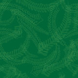 Seamless Fern Leaves Pattern in Green Colors Stock Images
