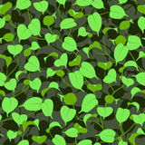 Seamless ficus green leaves background Royalty Free Stock Image