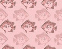 Seamless Fish Pattern Stock Photos