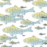 Seamless fish pattern. Seamless pattern with fish on white background Royalty Free Stock Photo