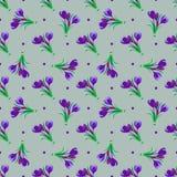 Seamless fjädra mönstrar Krokus saffran, liljekonvalj, sn Arkivfoto